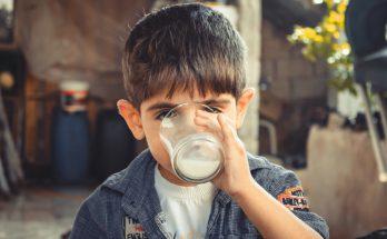 Аллергия на коровье молоко у ребенка. Как бороться с проблемой и альтернативы замены молока.