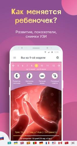 Моя беременность: календарь беременности